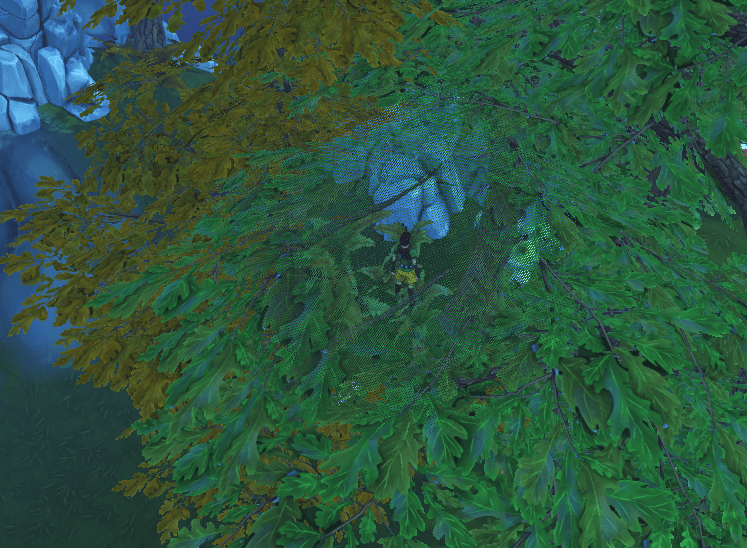 canopy3.png